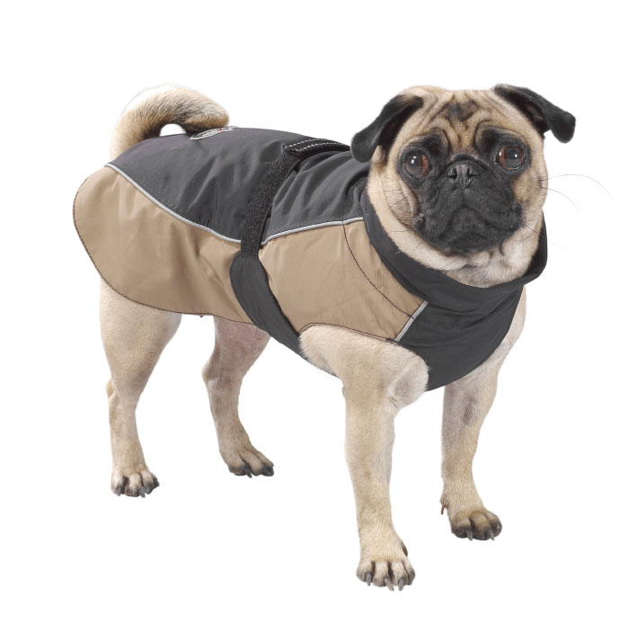 Animal Gurukul Pet Shop